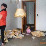 Vorher: Susann bei den Renovierungsarbeiten im jetzigen Kinderzimmer des Pferdemädchens (Foto: privat)