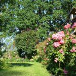 Gartenträume am Mühlgraben (Foto: Regina Katzer)