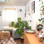 Ein Haus im Glück (Foto: Regina Katzer)