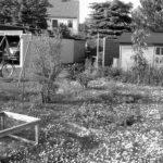 Vorher-Gartenimpression (Foto: privat)