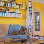 Hausbesuch am Rande der Stadt (Foto: Regina Katzer)