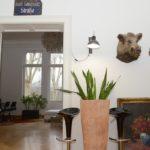 Hausbesuch bei Peter im Musikviertel (Foto: Regina Katzer)